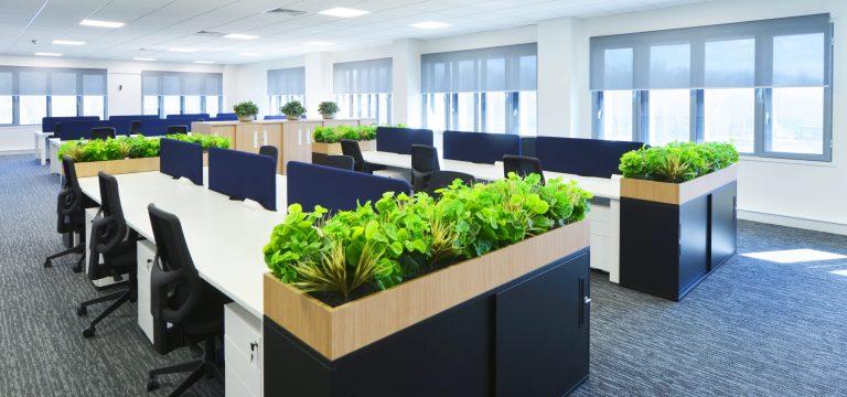 Office Design Koura